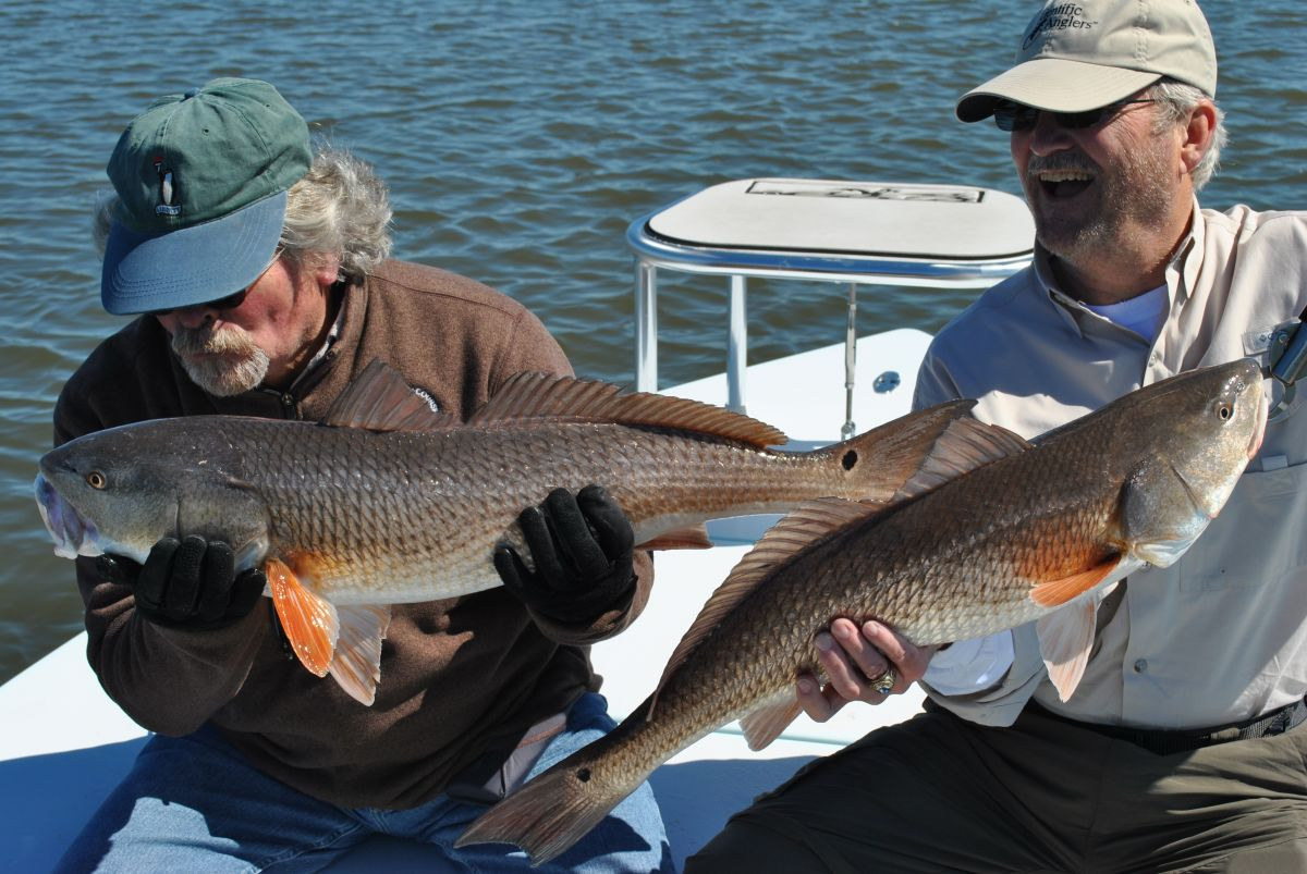 Guiding Refish anglers in Charleston
